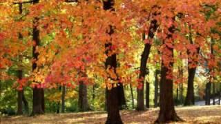 Осень. Тимур Темиров. 640x480
