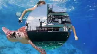 Catamaran Ventana Crewed Yacht Charter Vacations
