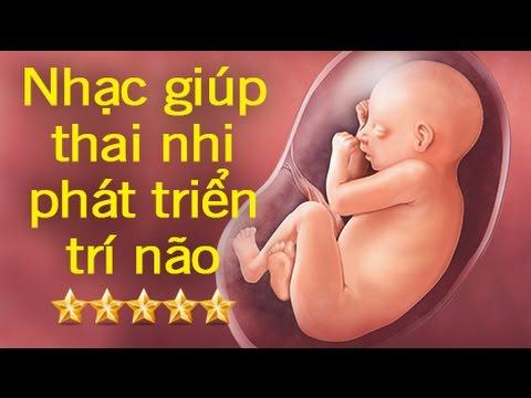 Bản nhạc hay nhất cho thai nhi nghe để phát triển trí não toàn diện – Phần 2 [GiupMe.com]