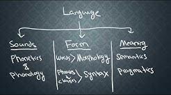 SEMANTICS-1: What is Semantics?