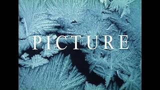PICTURE OF LIGHT - Trailer - Gimli Film Festival 2017