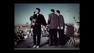Elvis Presley-Anyway You Want Me That