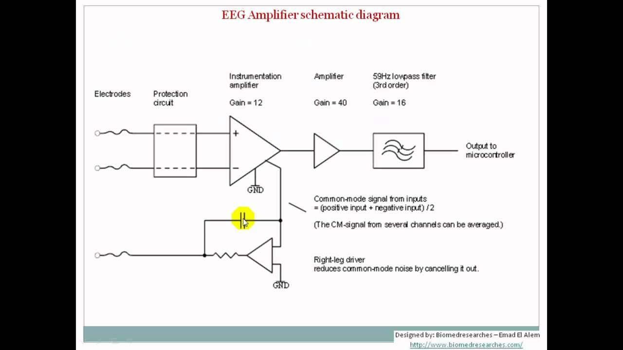 understanding eeg part8 eeg localization and amplifiers what is electroencephalography eeg  [ 1280 x 720 Pixel ]