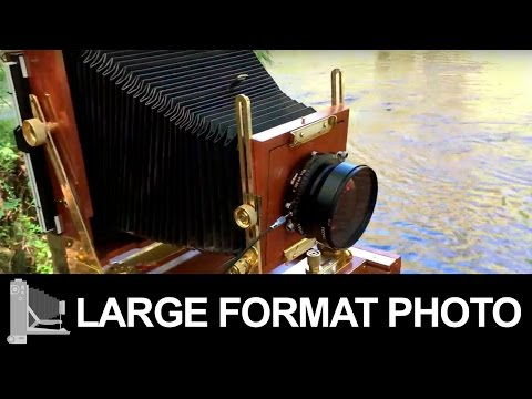 Hillsborough River State Park - Large Format Photography