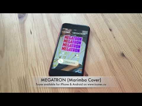 MEGATRON Ringtone - Nicki Minaj Tribute Marimba Cover Ringtone - IPhone & Android Download