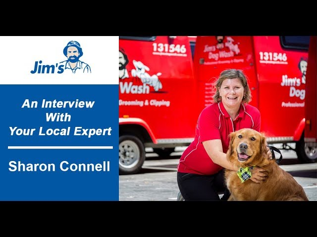 #JIMS 130 franchises sold in 18 months! Interview with Sharon Connell from Jim's Dog Wash