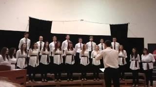 Zbor Allegro - Voćka poslije kiše