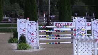Video of ARWEN ridden by RALEIGH HILER from ShowNet!
