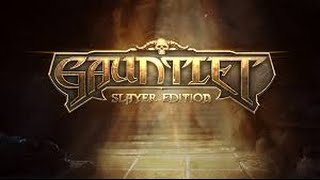 #29 Gauntlet: Slayer Edition - Guide to solo Endless Mode with Warrior~