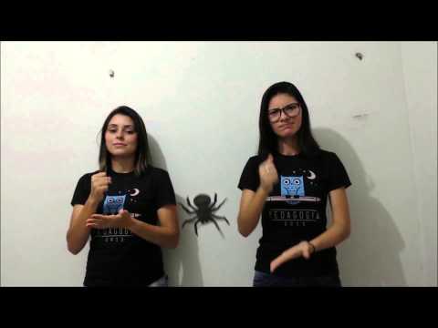 """""""A Dona Aranha""""- LIBRAS"""