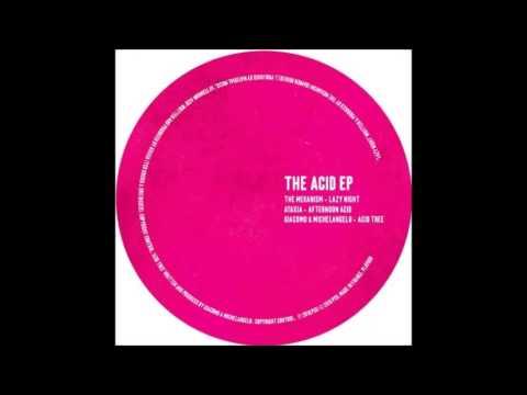 ATAXIA - Afternoon Acid - (Original Mix)