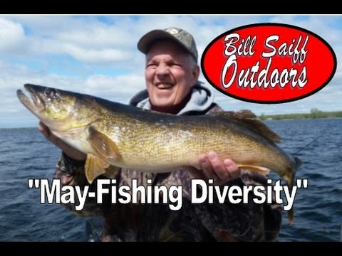 Lake Ontario Spring Fishing Tip! (Extreme Diversity)-Saiff Charters Catching 5 Species!