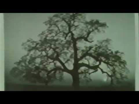 Ansel Adams - Documentary HD 1980