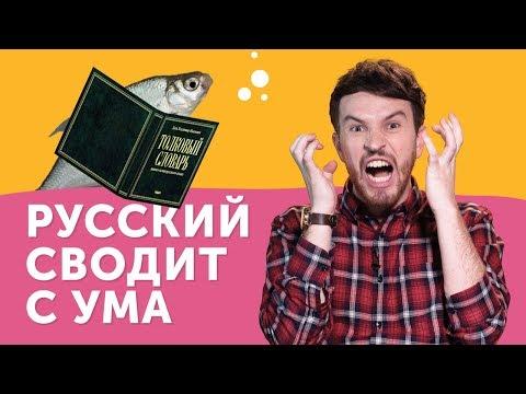 СТРАДАНИЯ ИНОСТРАНЦА:  почему русский язык такой сложный?