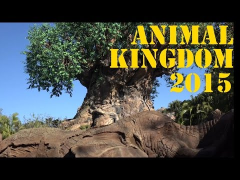 Animal Kingdom 2015 Orlando Florida