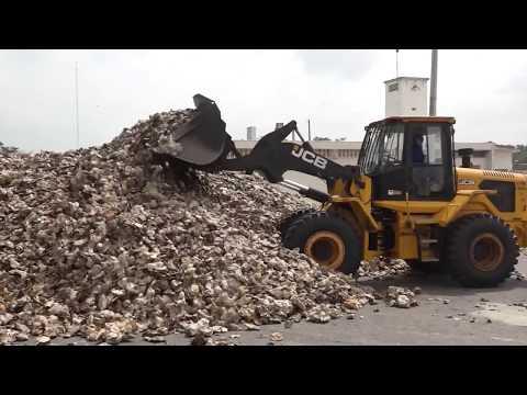 La plus grande usine de caoutchouc naturel d'Afrique inaugurée en Côte d'Ivoire.