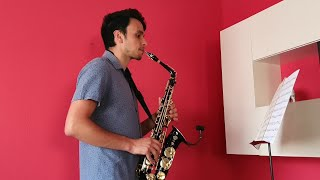 Aerosmith - I don't want to miss a thing (Sax cover DuroSax)