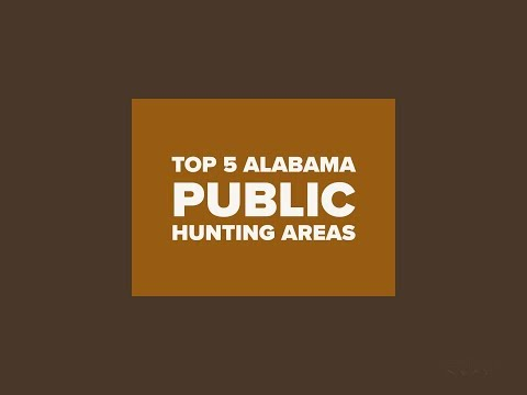 Top 5 Alabama Public Hunting Areas