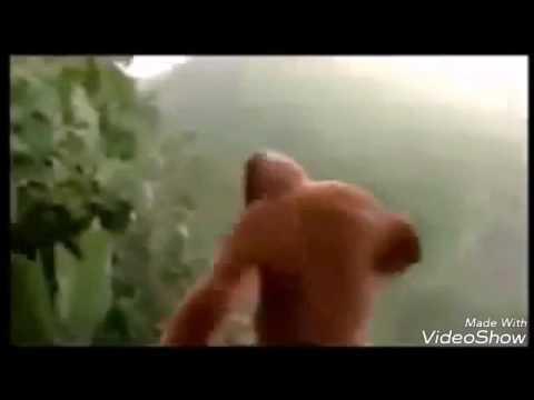 Goyang Gemu fa mi re. Monyet joget. Blok 25 (Goyang ke Kiri)