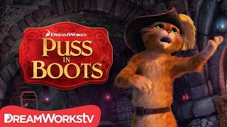 Is Puss In Boots Pitch Perfect? | NEW PUSS IN BOOTS