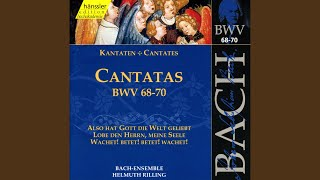 Also hat Gott die Welt geliebt, BWV 68: Aria: Du bist geboren mir zugute (Bass)