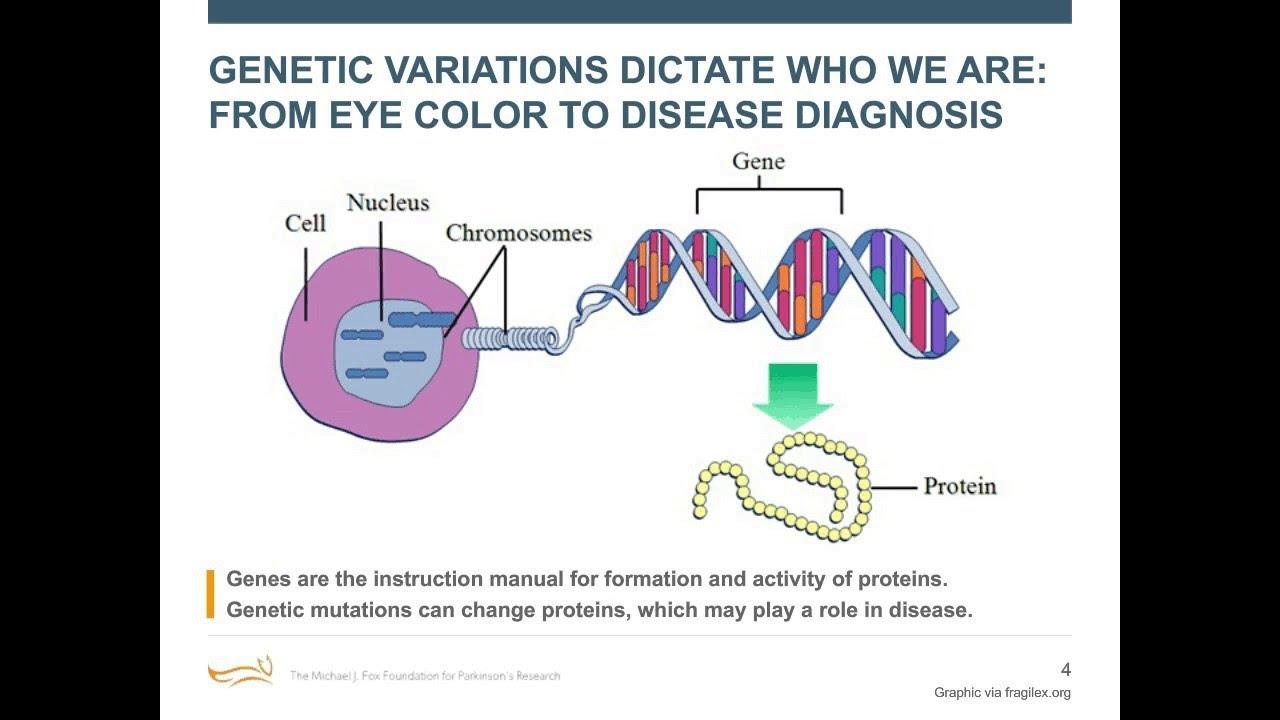 """Webinar: """"Parkinson's Genetics"""" February 2017 - YouTube"""