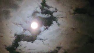 달을 품은 용 포토샵으로 이미지에 선 지우기