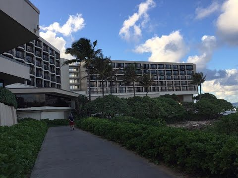 Walking Around Turtle Bay Resort
