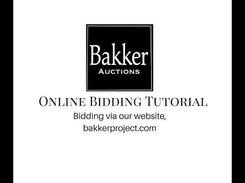 Online bidding at bakkerproject