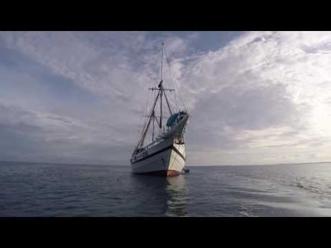 Palau diving - October 2016