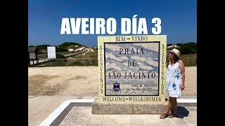 Aveiro, Reserva Natural de San Jacinto y Costa Nova 4K, Día 3 - Guía de Viaje Portugal