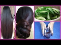 Magical Homemade Herbal Hair Oil Grow Hair 1 inch in 10 Days 100 Works