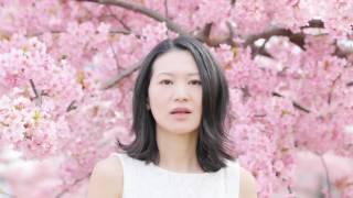 桜の美しさと儚さを表現したサクララが歌バージョンになって生まれ変わ...