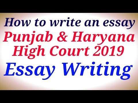 How to write an essay|Essay Writing|Punjab & Haryana High Co