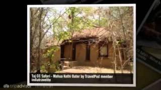 """Bandhavgarh Tiger Trail"" Indiatravelite"