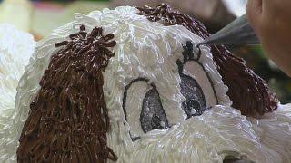 видеоурок: торт собака
