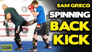 Sam Greco: Tips for throwing a spinning back kick!