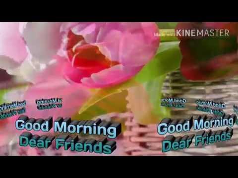 Good Morning Gift