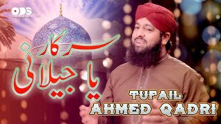 Sarkar Ya Jelani | Tufail Ahmed Qadri | ODS Production Naat
