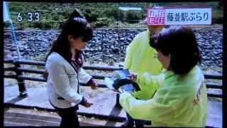 有田川町田口の地元の方々が、ボランティアで源氏ボタルの保護をし、毎...