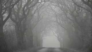 Antropophobia - Scream in Emptiness (remastering 2014)