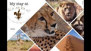 My stay at N/a'an ku sê Wildlife Sanctuary 2018