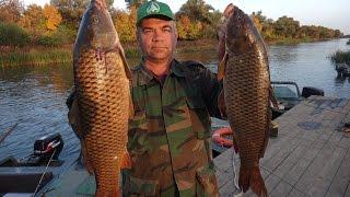 Самая лучшая рыбалка. Super Fishing(Рыбалка в #Астрахани и на #раскатах #ДельтаВолги #рыба #щука #сом #окунь #сазан #красноперка #SergeyStarovoitov #WFT..., 2016-02-13T19:21:07.000Z)