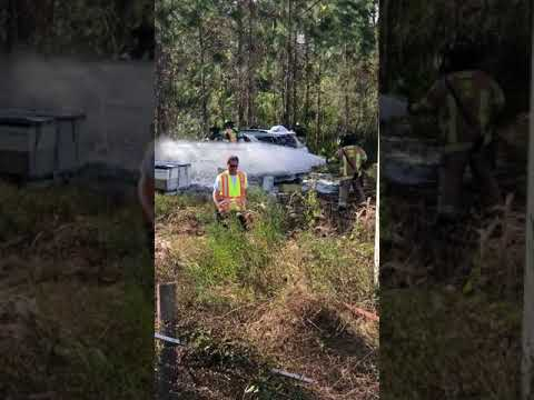 Raw: Car crashes into bee hives in North Port