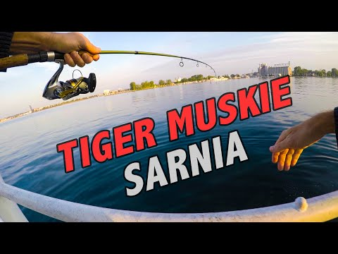 Fishing Sarnia, Ontario - (Catching Bass, Muskie, Pike, Walleye,  Pickerel)