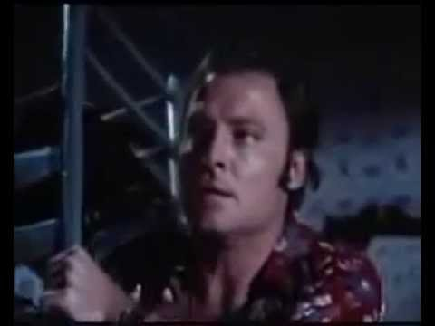 Stacy Keach   All The Kind Strangers      1974