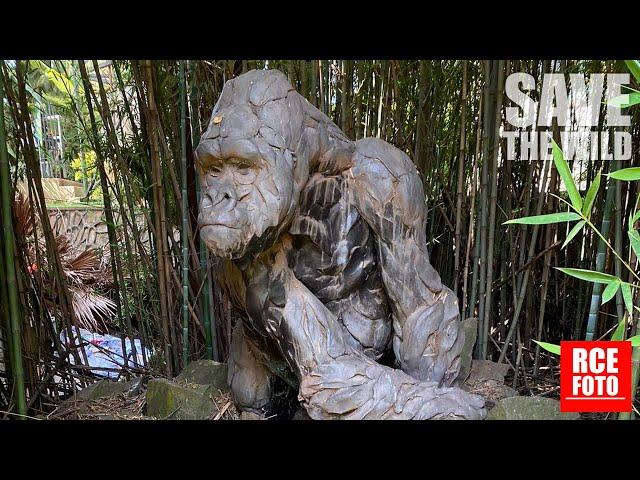 8 Gennaio 2021 - Uganda Wildlife Authority