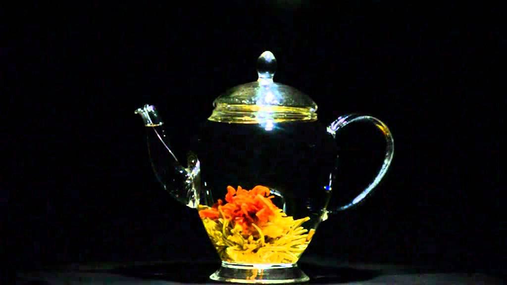vidéo de l'éclosion de la fleur de thé vert artistique « fleur de