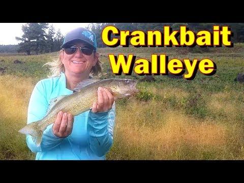 Walleye Fishing In Arizona At Upper Lake Mary