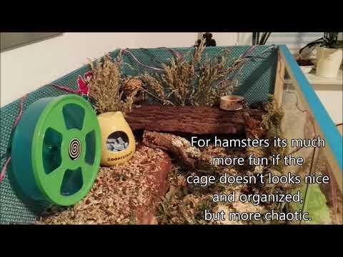 how-to-set-up-a-german-style-hamster-cage ❀-diegurkenfresser-❀